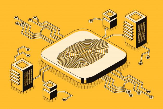 Katere spletne storitve ponuja digitalna agencija?
